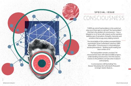 Consciousness_amends-1