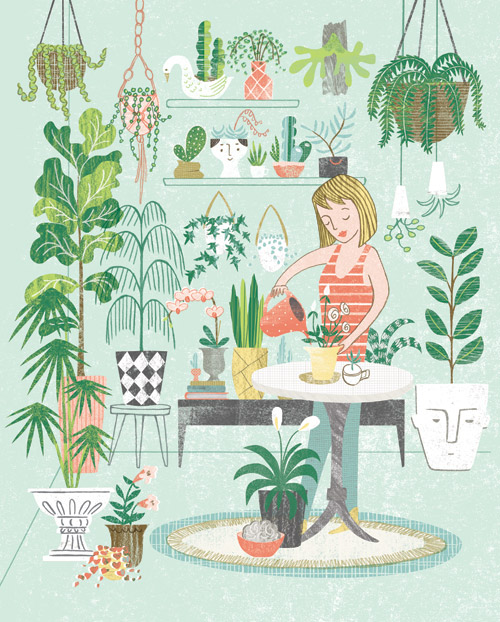 AK_homestyle_IndoorPlants
